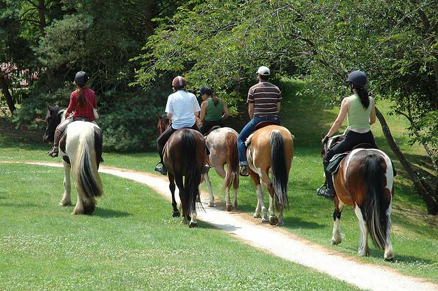 Faire du cheval en Bretagne