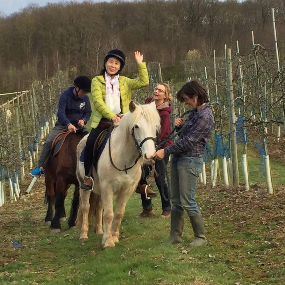 Faire du cheval en Ile-de-France