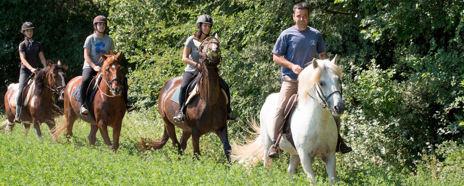 Faire du cheval en Provence-Alpes-Côte d'Azur